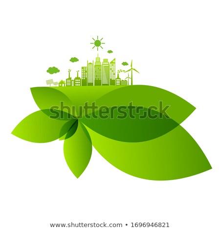 Sostenibile energia scienziato sviluppo idee pannelli solari Foto d'archivio © RAStudio
