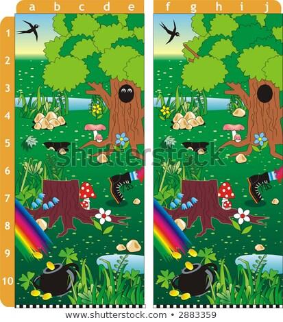 Jour de St Patrick trouver dix différences puzzle répondre Photo stock © Natali_Brill