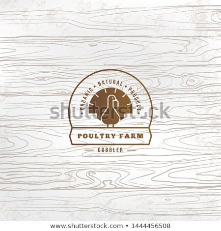 Törökország logo sziluett szöveg baromfi farm Stock fotó © FoxysGraphic
