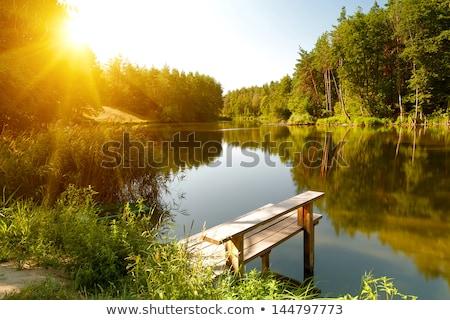 Scena drzew staw ilustracja niebo krajobraz Zdjęcia stock © colematt