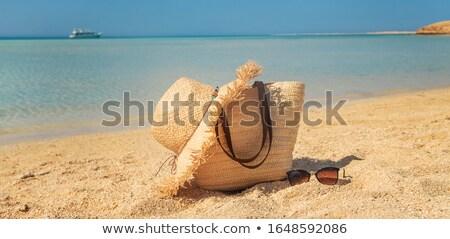 Conchiglia spiaggia foglie di palma mare Palm Foto d'archivio © AndreyPopov