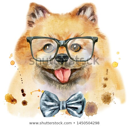 Watercolor portrait of dog pomeranian spitz with bow-tie and glasses Stock photo © Natalia_1947