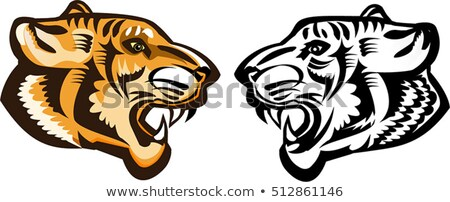 tiger or panther head with big fangs illustration stock photo © tikkraf69