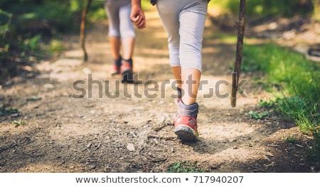 fiatal · nő · sétál · kirándulás · nyom · nő · hegy - stock fotó © andreypopov