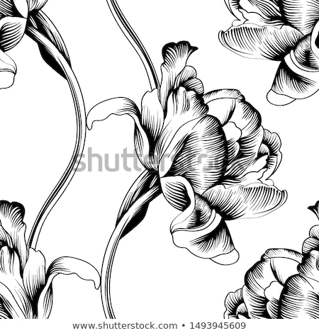 Monochrome Seamless Pattern with Tulips Stock photo © lissantee