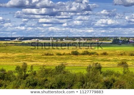 Kolostor Oroszország katedrális égbolt fű nyár Stock fotó © borisb17