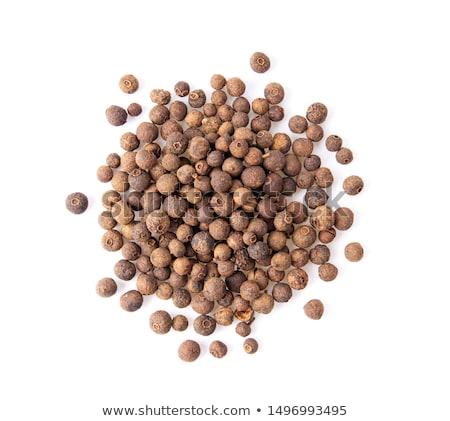 Tutto frutti di bosco cucchiaio bianco gruppo Spice Foto d'archivio © Digifoodstock