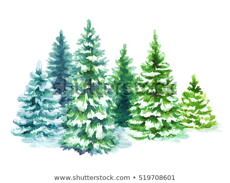 Fairy tale fir tree forest Stock photo © Zhukow