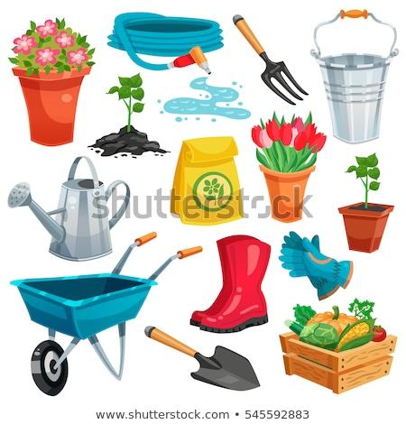 Jardineiro solo vetor sorridente Foto stock © robuart