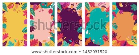 Toplama poster merhaba sonbahar yaprakları ayarlamak yalıtılmış Stok fotoğraf © barsrsind