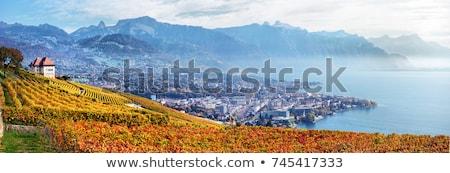 Stock fotó: Naplemente · Svájc · híres · védett · hegyek · tó