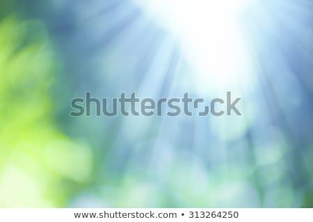 Blauw · Geel · bokeh · abstract · lichtblauw · licht - stockfoto © magann