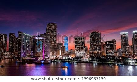 Stock fotó: Miami · éjszaka · kilátás · sziluett · iroda · város
