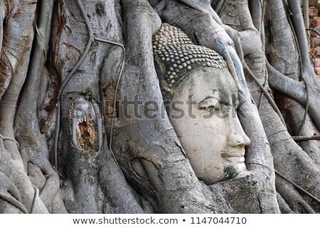 ősi · szobor · fák · dombok · mögött · arc - stock fotó © jkraft5