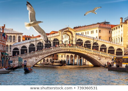 rialto bridge ponte di rialto on a sunny day stock photo © andreykr