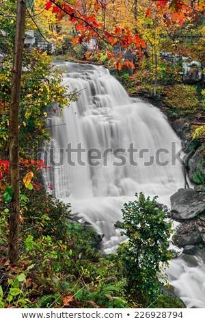 Sonbahar manzara çağlayan park doğa yaprak Stok fotoğraf © saje