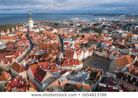 Stadhuis vierkante Estland reizen Europa draak Stockfoto © chrisdorney