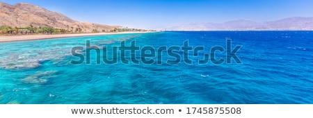 Trópusi tengerpart Vörös-tenger Egyiptom tengerpart égbolt virágok Stock fotó © Mikko