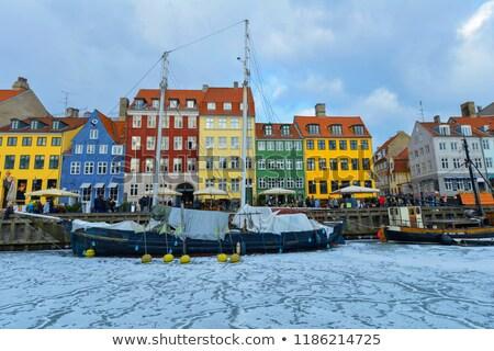 Tél Dánia technológia energia erő drót Stock fotó © jeancliclac