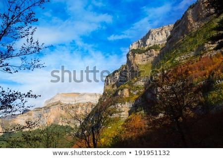 Szczyt Hiszpania dolinie drzewo trawy charakter Zdjęcia stock © lunamarina