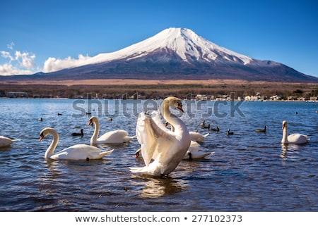 Fuji berg meer hemel water landschap Stockfoto © vichie81