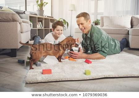 família · cão · jogar · bola · sala · de · estar · terrier - foto stock © kzenon