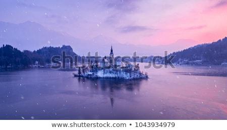tó · sziget · Szlovénia · víz · erdő · tájkép - stock fotó © fesus