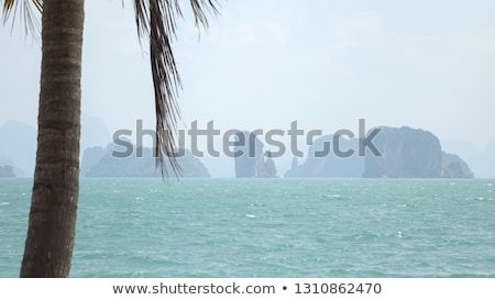 Wapień plaży skał Tajlandia rock brzegu Zdjęcia stock © Mps197