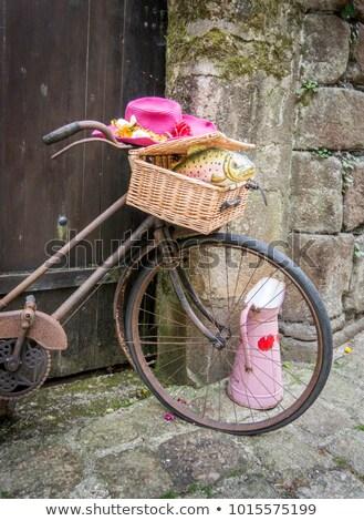 Paslı bisiklet eski ahşap kapı Stok fotoğraf © smartin69