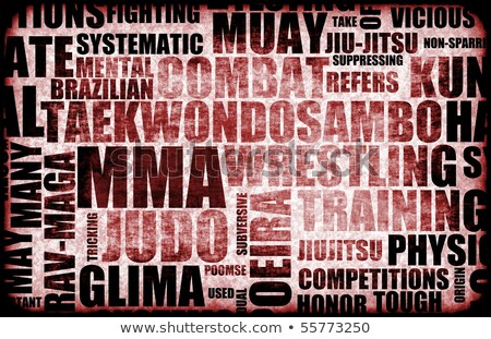 Different types of martial arts Stock photo © bluering