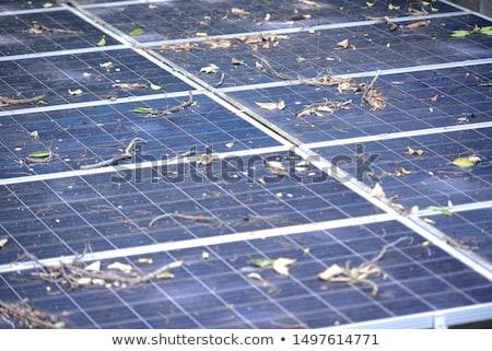 Zonnepanelen oppervlak hernieuwbare energie zon energie dak Stockfoto © stevanovicigor