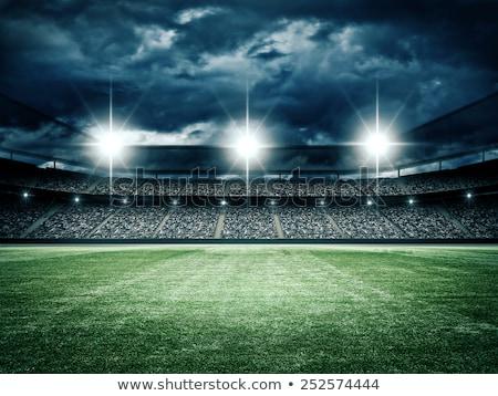 Deporte estadio noche iluminado verde azul Foto stock © wavebreak_media