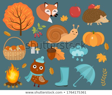hello autumn icons set flat or cartoon stylecollection design elements with leaves trees mushroom stock photo © lucia_fox