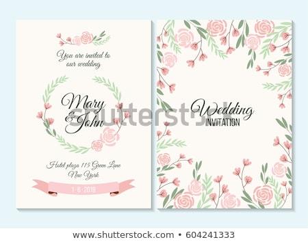 çiçekler çerçeve şerit beyaz çiçekler beyaz eğim Stok fotoğraf © cammep