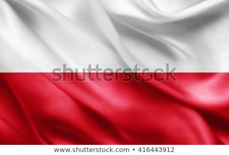 National Poland flag background Stock photo © romvo