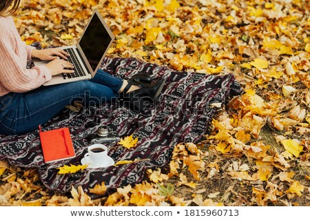 A girl using a laptop in a forest Stock photo © IS2