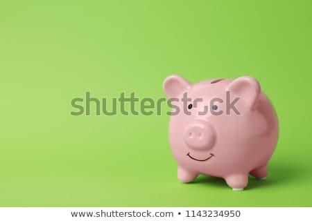 зеленый · керамической · Piggy · Bank · безопасной · изолированный · белый - Сток-фото © pakete