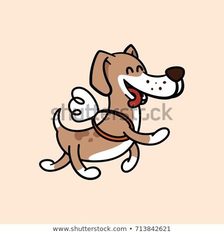 Cartoon bracco esecuzione illustrazione animale grafica Foto d'archivio © cthoman
