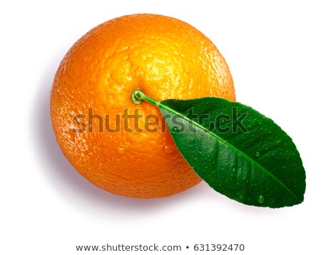 Orange Citrus sinensis, paths, top view Stock photo © maxsol7