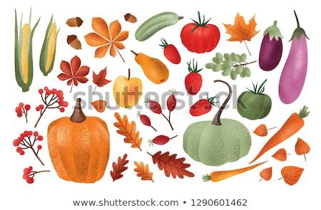 Taze gıda olgun üzüm vektör yalıtılmış Stok fotoğraf © robuart