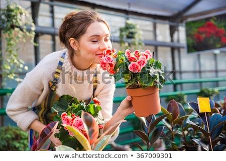 gelukkig · vrouw · bloemen · broeikas · mensen · tuinieren - stockfoto © deandrobot