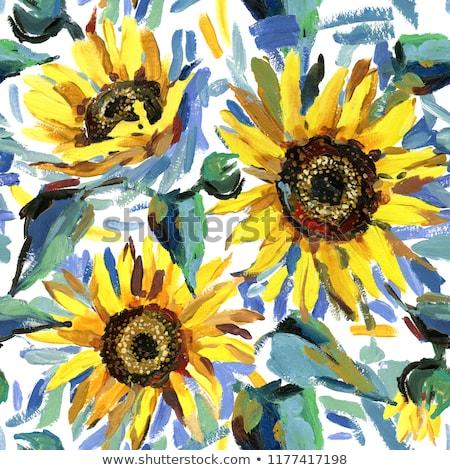 Słonecznika rolniczy roślin oleju bezszwowy słoneczniki Zdjęcia stock © LoopAll