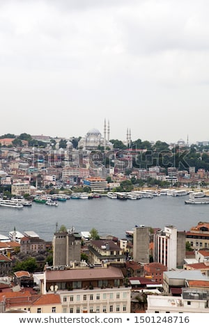 Houses and public buildings densely cover an area of Istanbul, T Stock photo © boggy