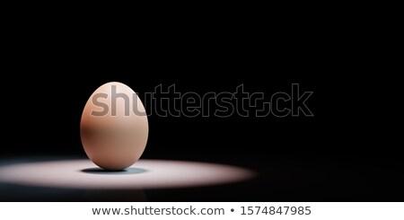 один яйцо черный копия пространства 3d иллюстрации свет Сток-фото © make