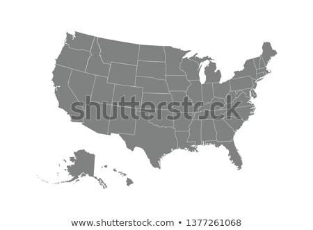 Egyszerű térkép USA stock izolált fehér Stock fotó © kyryloff