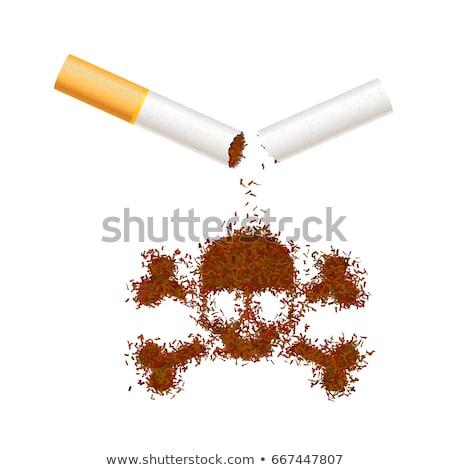 Gebroken realistisch sigaret tabak bladeren schedel Stockfoto © evgeny89