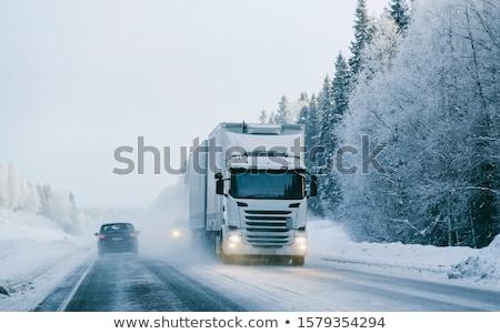 Nehéz hó út ködös nap fák Stock fotó © joyr