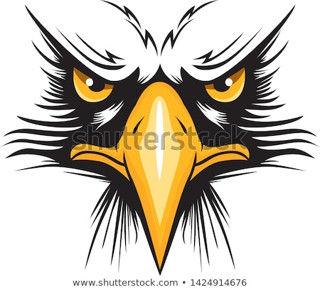 Stock foto: Eagle Mascot Head Vector Graphic