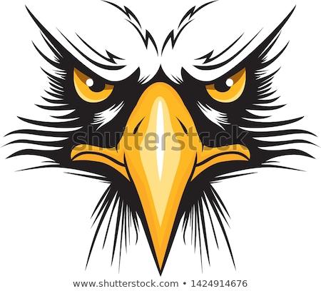 Stok fotoğraf: Eagle Mascot Head Vector Graphic