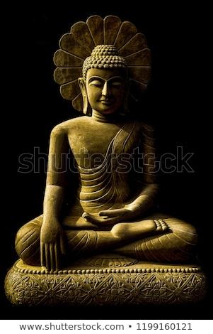 Eski Buda heykel büyük unesco dünya Stok fotoğraf © smithore